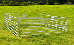 Gibneys Sheep Hurdles