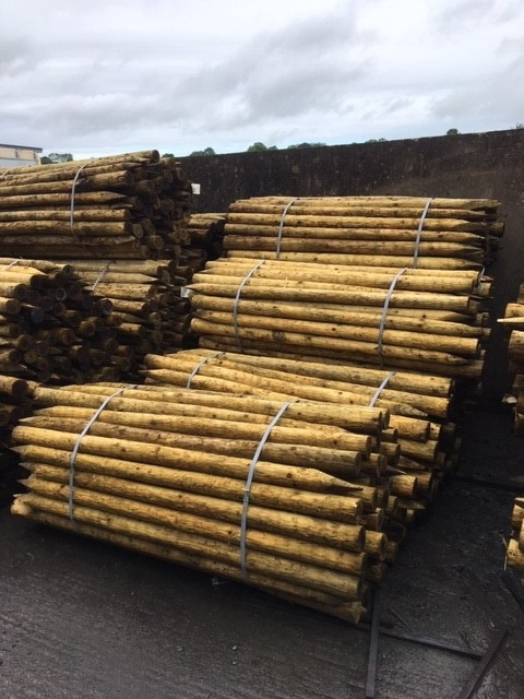 Kiln Dried HG4 - Medium Peeled Posts